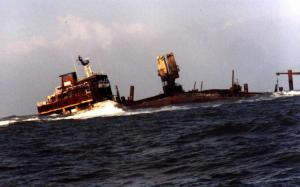 """""""Pallas"""" 1998 im norddeutschen Wattenmeer"""